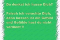 Sprüche_011
